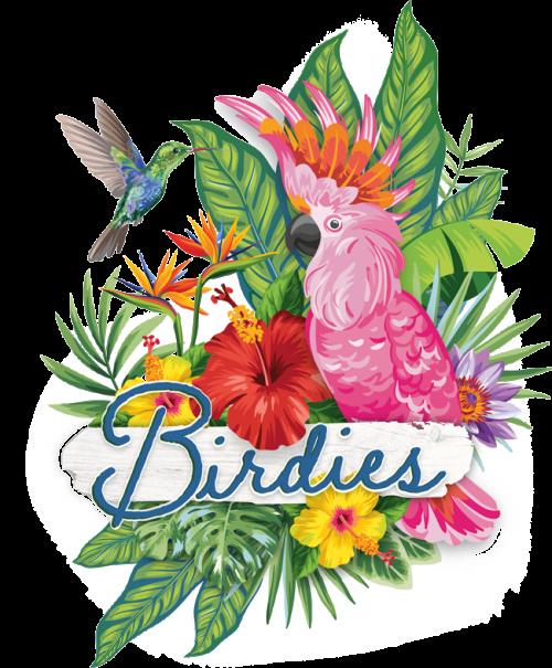 Birdies-logo